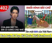 Top Comment - Ảnh Chế Hài Hước