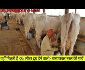 Jitu Revolutionary Farmer
